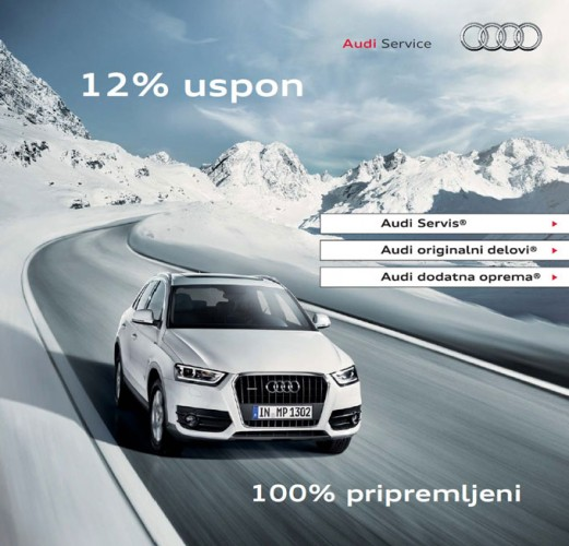 Zimska servisna akcija Audija
