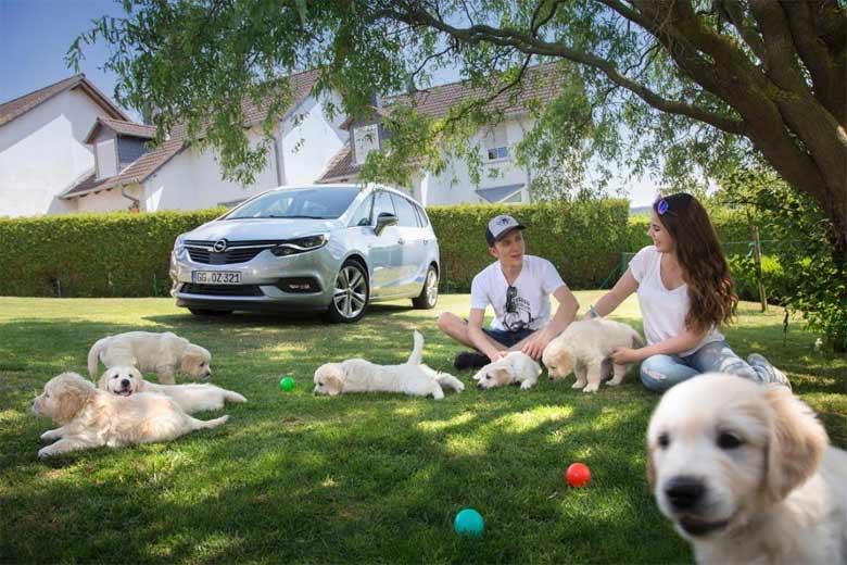 Opel i psi